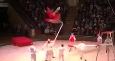Circo, il numero dell'acrobata è perfetto ma…