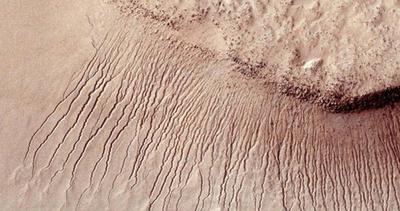 Vita su Marte? Secondo la scienza sì