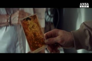'Woman in gold', vera storia di un ritratto di Klimt