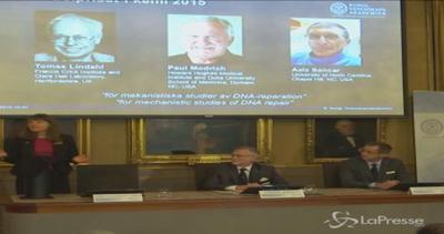 Nobel, premio Chimica a Lindhal, Modrich e Sancar per studi ...