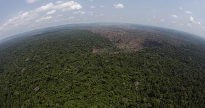 Paraguay, indigeni Ayoreo protestano contro disboscamento ...