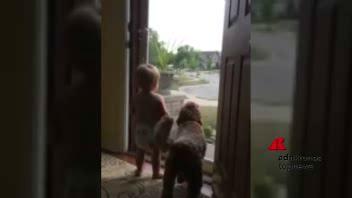 Il piccolo e fido aspettano il ritorno di papà