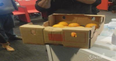 Blitz con le arance del M5S alla 'Giornata della trasparenza