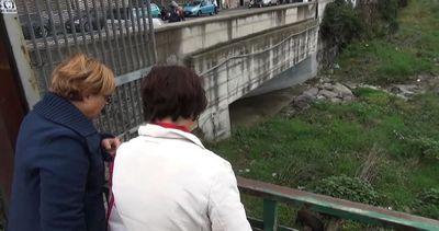 A Genova allarme cinghiali, ma apprezzano la focaccia