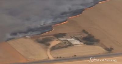 Australia, campi di grano in fiamme vicino Mallala