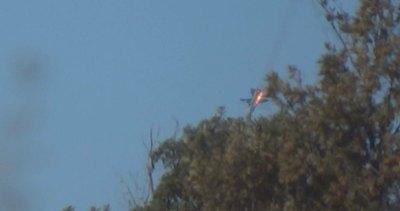 Siria, Sacerdoti (Bocconi): Necessaria azione collettiva ...